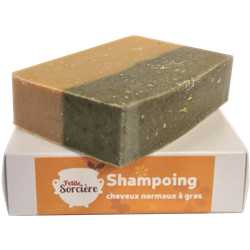 Shampooing cheveux normaux à gras - PM 90 gr